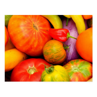 Colorful Heirloom Tomatoes Postcard