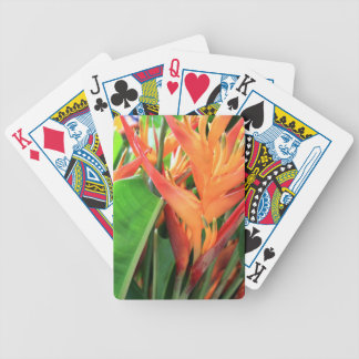 Colorful Heliconia Photo Playing Cards