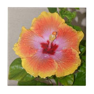Colorful Hibiscus Flower Ceramic Tile