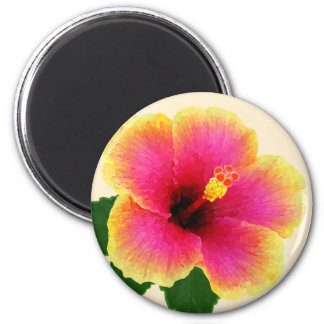 Colorful Hibiscus on Off White Magnet