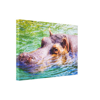 Colorful Hippo In Water, Animal Photography Canvas Print