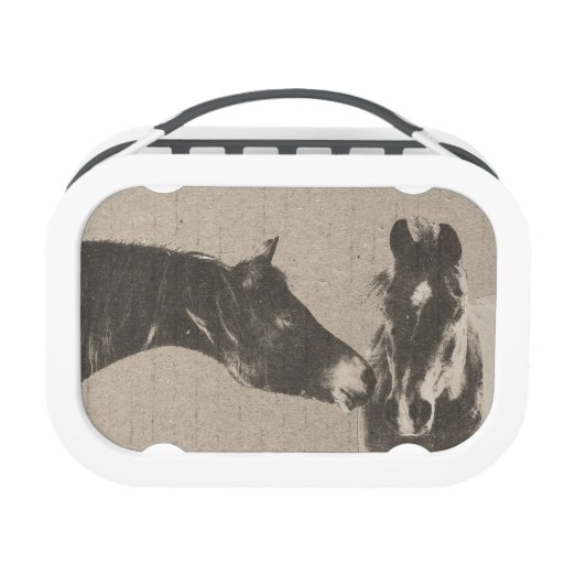 Colorful Horse Pattern Replacement Plate