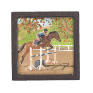 Colorful Horse & Rider Jumping Gift Box