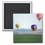 Colorful hot air balloons float over wheat 2 inch square magnet