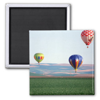 Colorful hot air balloons float over wheat magnet