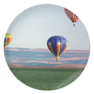 Colorful hot air balloons float over wheat melamine plate