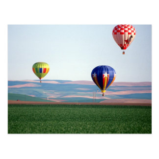 Colorful hot air balloons float over wheat postcard
