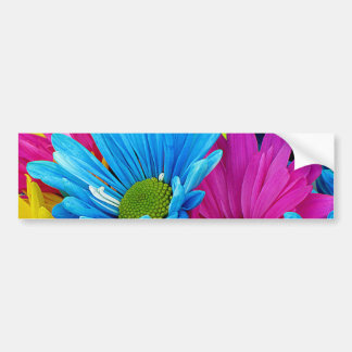 Colorful Hot Pink Teal Blue Gerber Daisies Flowers Bumper Sticker