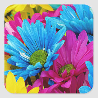 Colorful Hot Pink Teal Blue Gerber Daisies Flowers Square Sticker