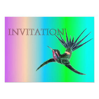 Colorful Hummingbird Illustration Card