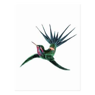 Colorful Hummingbird Postcard