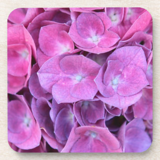 Colorful Hydrangea Flowers Coasters