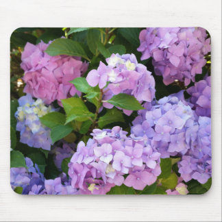 colorful hydrangea mouse pad