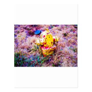Colorful Hydrant Postcard