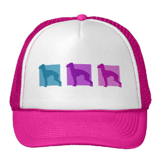 Colorful Italian Greyhound Silhouettes Hat