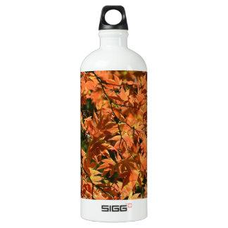 Colorful japanese maple leaves aluminum water bottle