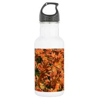 Colorful japanese maple leaves stainless steel water bottle