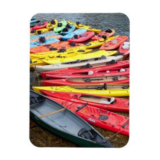 colorful Kayaks Magnet