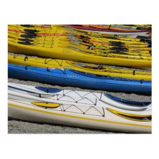 Colorful Kayaks Postcard