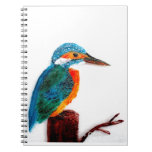 Colorful KIngfisher Bird Spiral Note Books