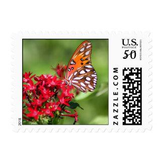 Colorful Kinship stamp