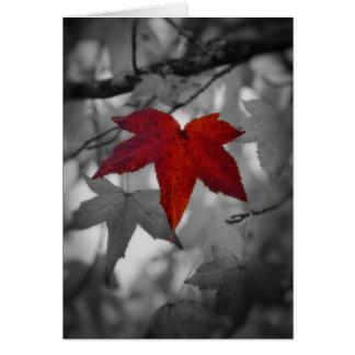 Colorful Leaf-Blank Card