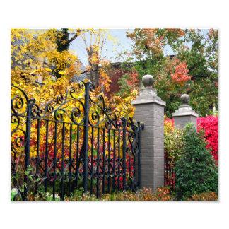 Colorful Leaf Gate in Louisville Photo Print