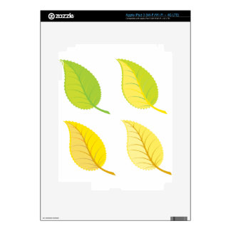 Colorful leaves illustration skins for iPad 3