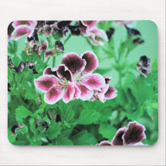 colorful leaves mouse pad
