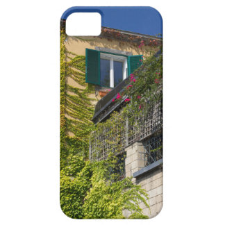 Colorful leaves on house iPhone SE/5/5s case