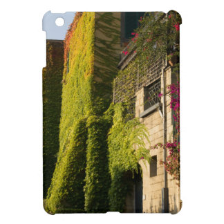 Colorful leaves on house walls iPad mini cover