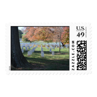Colorful leaves on tree in Arlington Stamp
