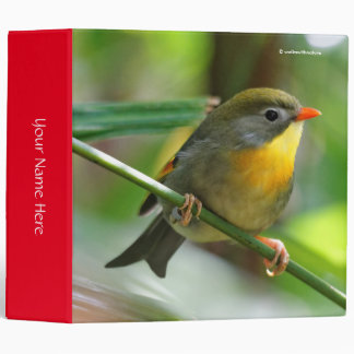 Colorful Leiothrix / Pekin Robin Songbird 3 Ring Binder