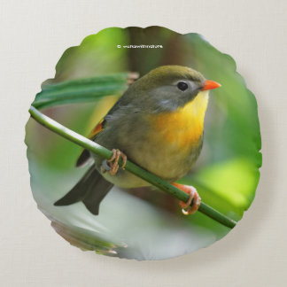 Colorful Leiothrix / Pekin Robin Songbird Round Pillow