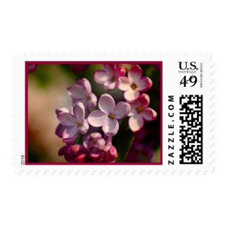 Colorful lilacs postage stamp