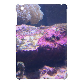 Colorful Live Rocks Cover For The iPad Mini
