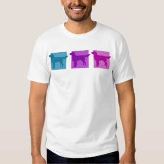 Colorful Llewellin Setter Silhouettes Shirt