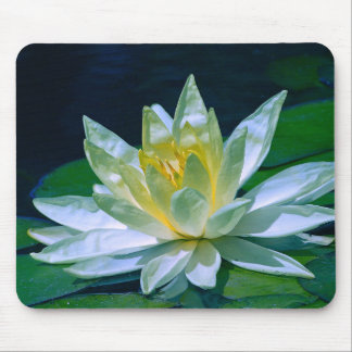 Colorful Lotus Mouse Pad