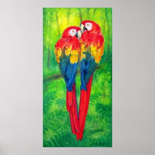 colorful love birds parrots poster art zazzle