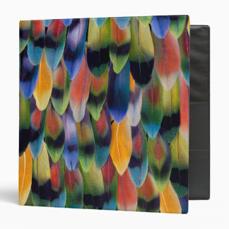 Colorful lovebird parrot feathers binder