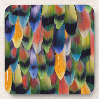 Colorful lovebird parrot feathers drink coaster