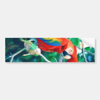 Colorful Macaw Car Bumper Sticker