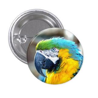 Colorful Macaw Parrot Portrait - Button