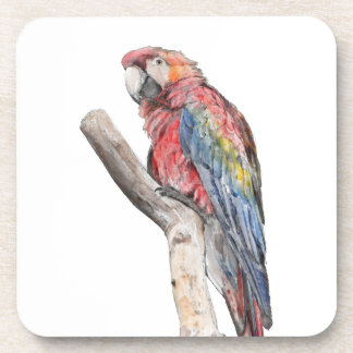 Colorful Macaw Parrot Watercolor Drink Coaster