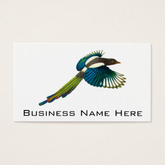 Colorful Magpie Bird, Vintage Illustration Business Card