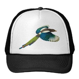 Colorful Magpie Bird, Vintage Illustration Trucker Hat