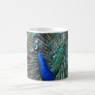 Colorful male peacock coffee mug
