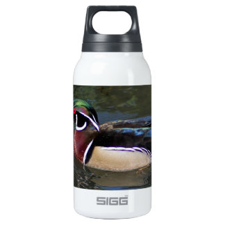 Colorful Male Wood Duck - Aix sponsa Thermos Water Bottle