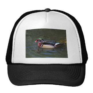 Colorful Male Wood Duck - Aix sponsa Trucker Hat