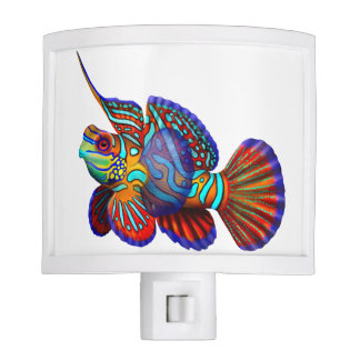 Colorful Mandarin Dragonet Fish Night Light
